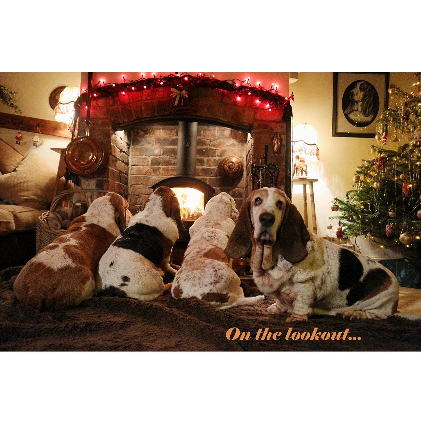 Christmas Card 2018 – SOLD OUT – Basset Hound Welfare